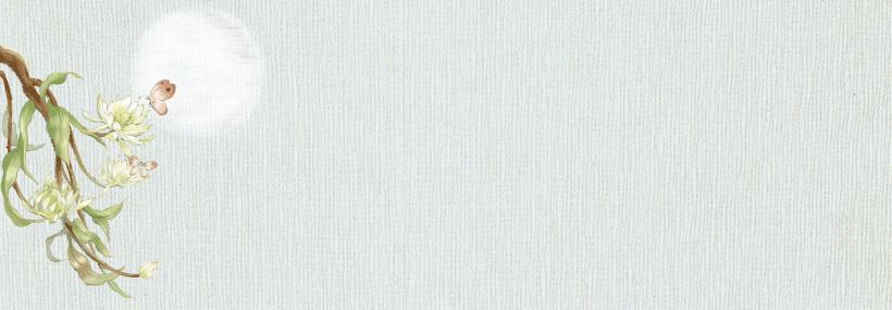 Banner-VDO